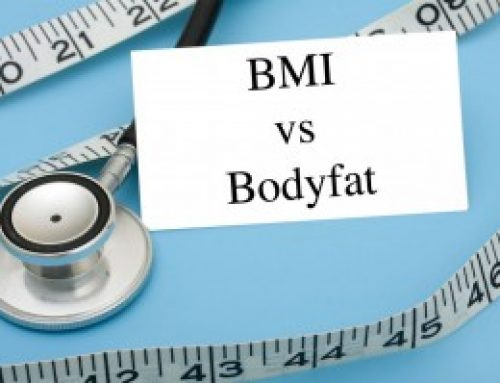 Body Fat / BMI